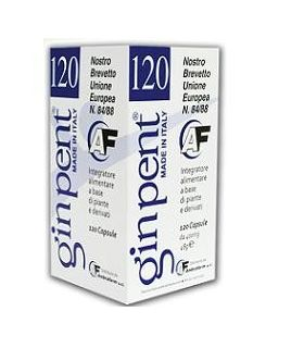 Ginpent 120 Capsule 400 Mg