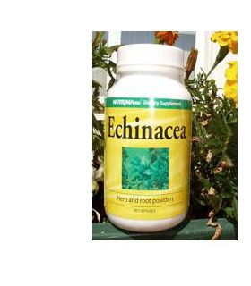 Natural Point Echinacea...